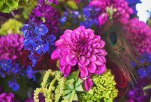 Flower colour themes♡