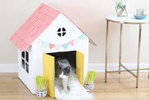 DIY for kittens