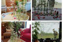 My Home & Garden