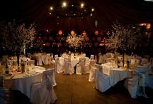 Bec & Ozay's Possible wedding venues