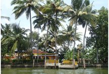 Kerala Travel Board / Explore Kerala, India through my pins and travelogues