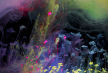 Art -Aqueous Flureau / by Eugene Borg