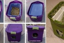DIY cat shelters & towers