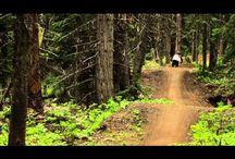 Mountain Biking / by Ashley Borron