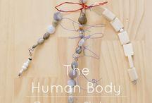 Human body provacation - reggio