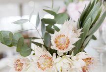 Blushing Bride Beauty