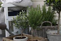 Utomhus inspiration / Möbler och grönska utomhus