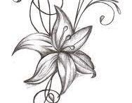 Art / drawings
