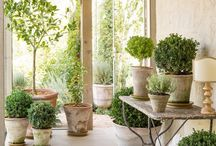 A Provencal style