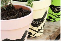 Garden / Gardening and outdoor ideas
