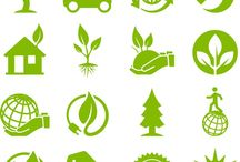 Environmental Causes
