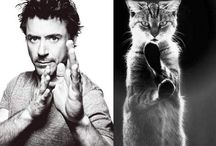 Male models that look like cats! Hahaha