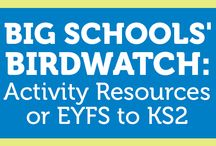 Key Stage 1 / Resources for primary learners in Y1 and Y2 (ages 5-7)