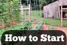 Sustainable living. / Sustainable housing development.