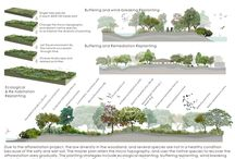 Land rehabilitation landscape design regenerare