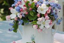 정원, 꽃 그리고 식물