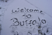 Buffalo & all its glory!!  ;-))) / by Sherry Denk