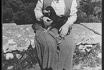 Gertrud Stein