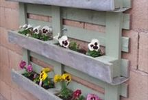 re-using Pallets