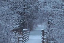 Winter Wonderland / Winter is one of the most beautiful time of the year. Let's discover some winter wonderland magic?