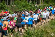 Trail-8 running / The employees of Red Fox company participated in Trail-8 running. 4-th of July 2015, Leningrad Oblast (near St. Petersburg)ю