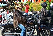 Harleysite #harley #harleydavidson #custom #picoftheday #harleyrider #helmets #helmet #helmetart