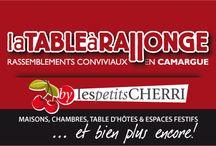 Bonnes adresses en Camargue / Les diverses activités des petits CHERRI en CAMARGUE