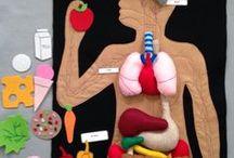 ciało ludzkie