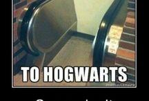 Harry Potter♀️
