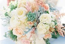 New Mexico Wedding / Another wedding board. / by Jacque Diane