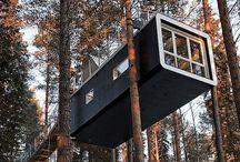 Tree Houses / by Wayne Benson