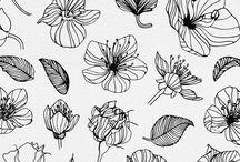 Flora(s)