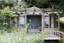 Outdoor//Garden / Outdoor, Gardening, Plants, Flowers