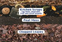 Sheet mulching / Everything about sheet mulching methods of gardening.