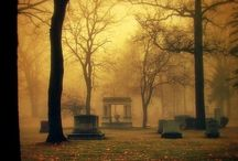 Cemeteries/Gravestones / by Cathi Stephens