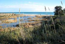 Platges i Cales - Playas y Calas / 12 km de costa on es combinen llargues platges i sinuoses cales de bellesa verge, un paratge únic de tranquil·litat, sol i natura. - 12 km de costa donde se combinan largas playas y sinuosas calas de belleza virgen, un paraje único de tranquilidad, sol y naturaleza.