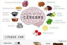 cerebro alim