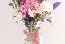 Flower bouquet / Flowers Nature Bio Garden