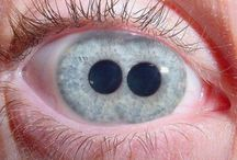 Eyes yas