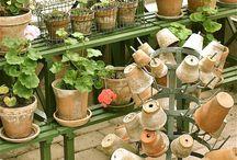 Clay pot love
