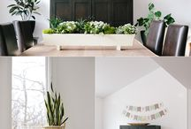 HOME :: Indoor Plants / by Stacey Bellotti