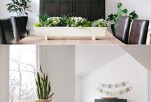 HOME :: Indoor Plants