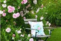 GARDEN PRETTIES / Beautiful ideas to make or copy for my new home