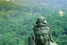 buddha's voor Tries