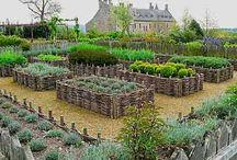 magaságyás, vertikális kert