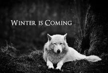 Game of Thrones / by Kira Schwickerath