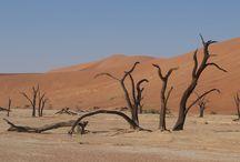 Reisinspiratie: Namibië / Cultuur, natuur en wilde dieren. De ideale mix voor een perfecte vakantie in Afrika. Ook heel leuk met kleine kinderen!