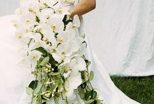 Wedding Ideas / by Doreen Gunderson