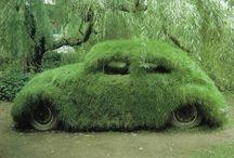 VW brouk