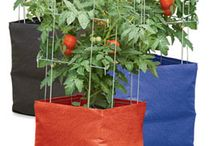 Peppers ,tomatoes grow bags